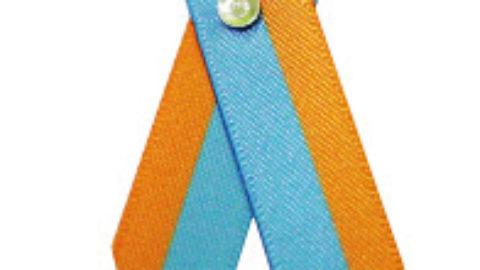3 decembrie – ziua internationala a persoanelor cu dizabilitati
