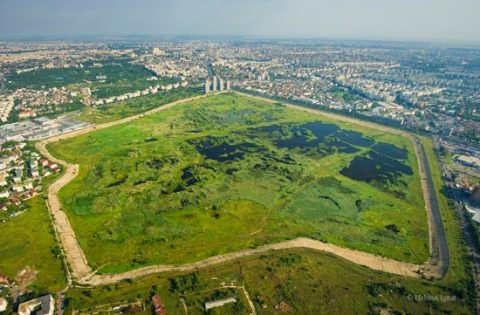 Wetland Link International (WLI) Support letter for Văcărești Wetlands, Bucharest