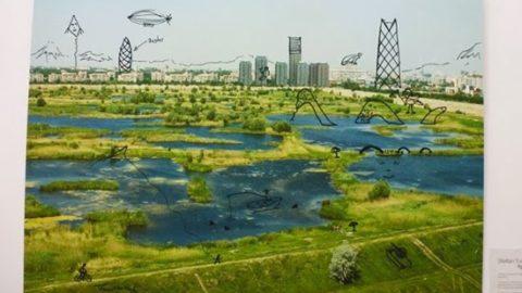 Ministerul Mediului întreabă: vrem Parc Natural Văcărești?