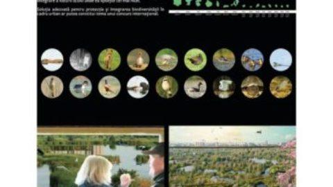 Parcul Natural Văcărești premiat la Anuala de Arhitectura Bucuresti 2016